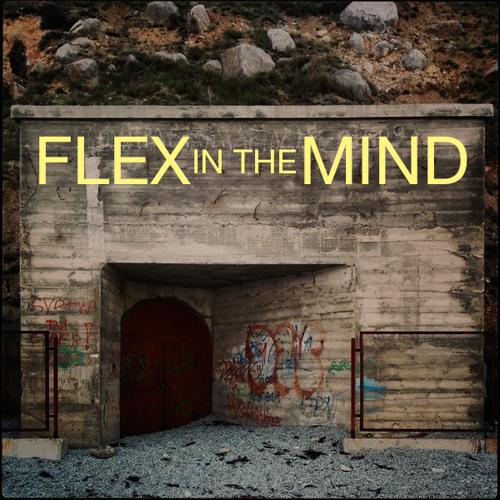 Flex in the Mind's avatar
