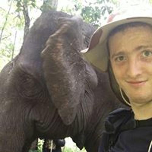 Theo Jaillet's avatar