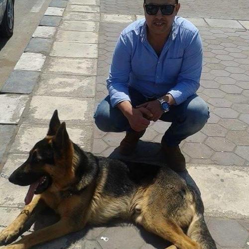 jimmy Soliman's avatar