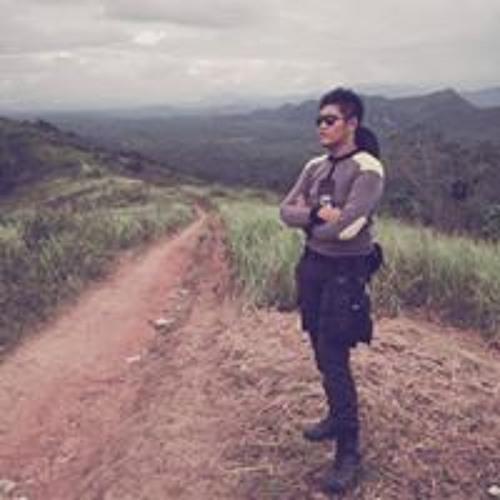 Rio Purwanto Sianturi's avatar