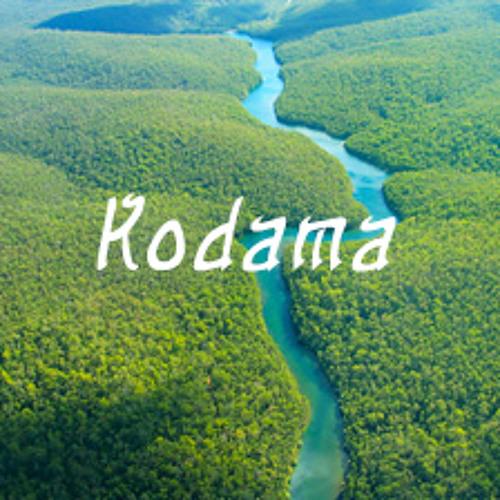 Kodama's avatar