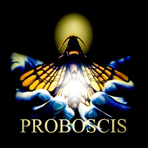 Proboscis Prophecies's avatar
