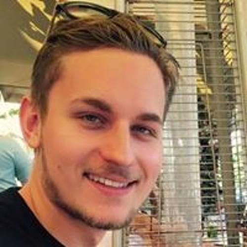 Teodor van den Berg's avatar