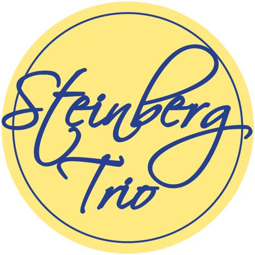 Steinberg Trio's avatar