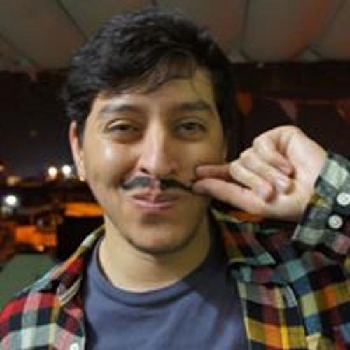 Leonardo Modesto's avatar
