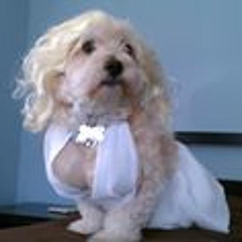 Bronson Pinchote's avatar