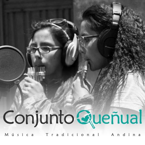 Conjunto Queñual's avatar