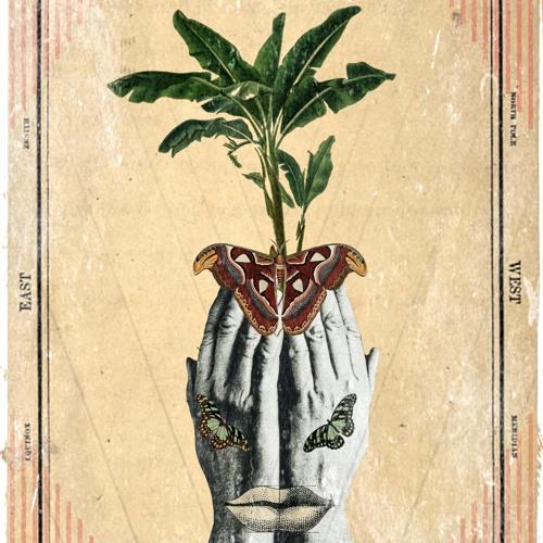 palillopapillon's avatar