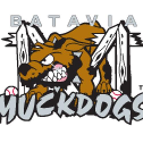 Batavia Muckdogs's avatar