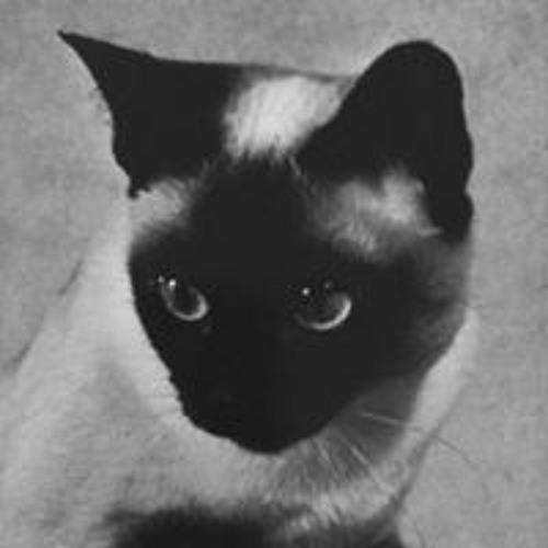 Sofia Schulz's avatar