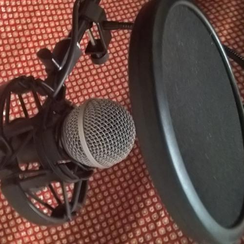Vitun Tiukka Records's avatar