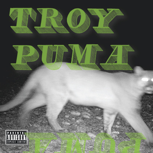 TROYPUMA's avatar