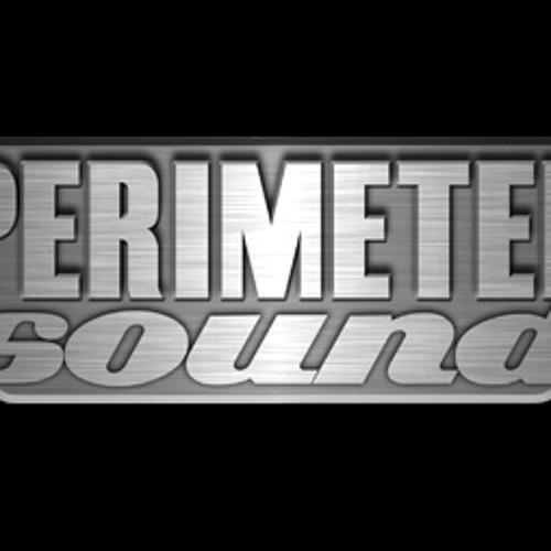 Perimeter Sound's avatar