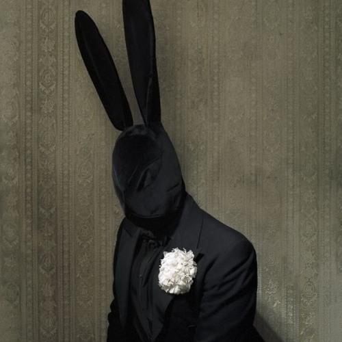 Alexey Pavlov's avatar