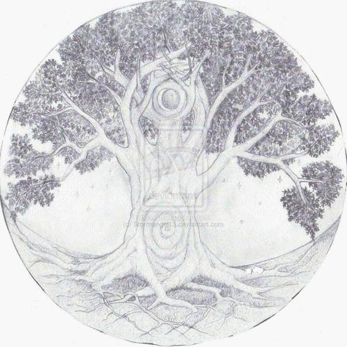 Timcc6195's avatar