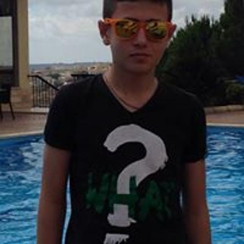 Ayman S Ayoub's avatar
