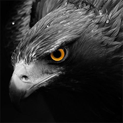 falc0n's avatar