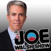 Joe Walsh Show
