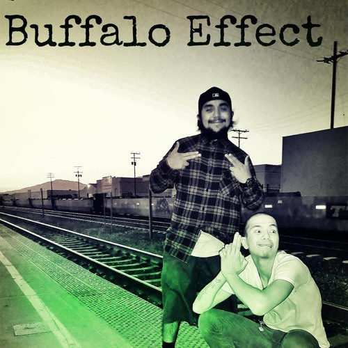Buffalo Effect's avatar