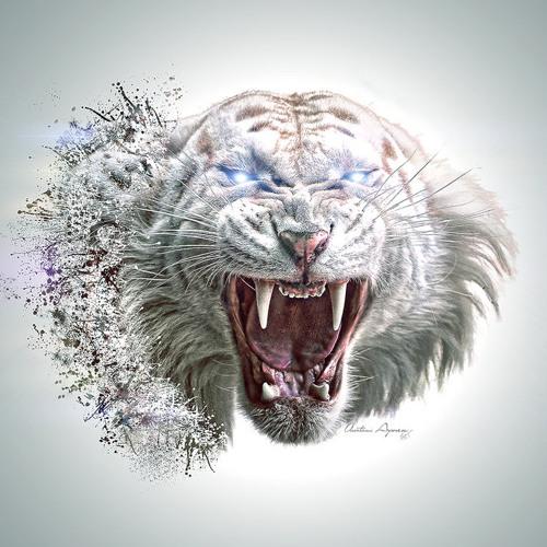 T1G3R FUNK's avatar