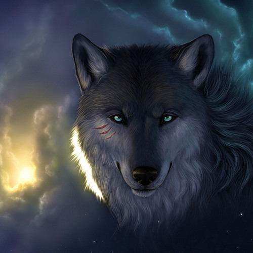 LeoFontoura's avatar