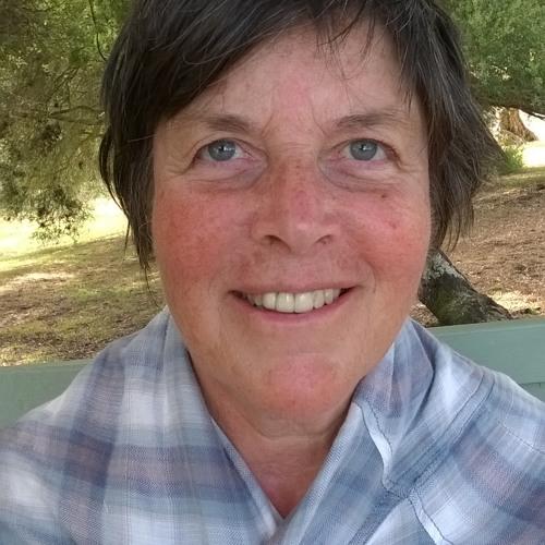 Susan Morse 1's avatar