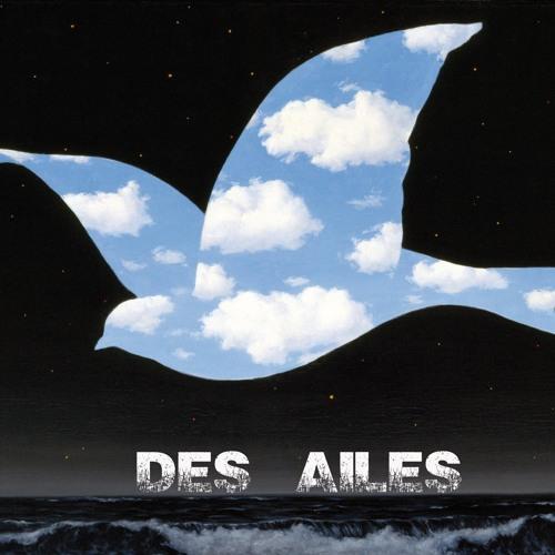 DES AILES's avatar