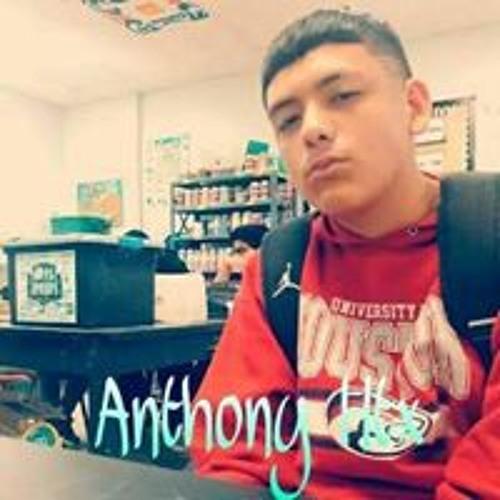 Anthony Htx's avatar