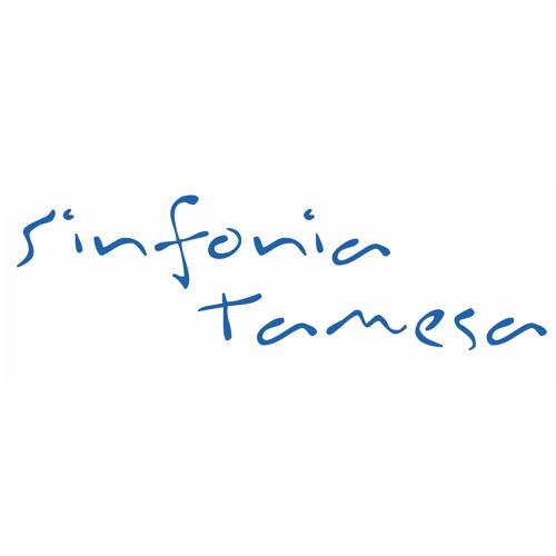 Sinfonia Tamesa's avatar