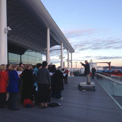 Auckland Dawn Chorus's avatar