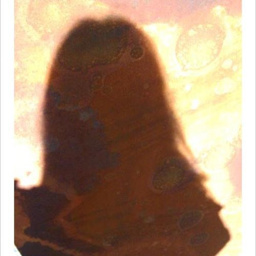 slutjunky's avatar