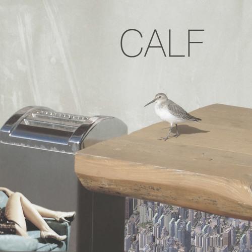 Calf's avatar