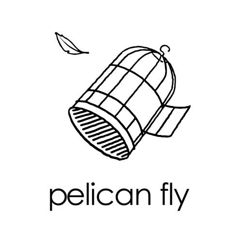 pelicanfly's avatar
