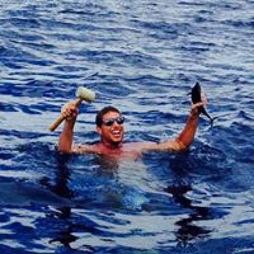 Nicholas Alamia's avatar
