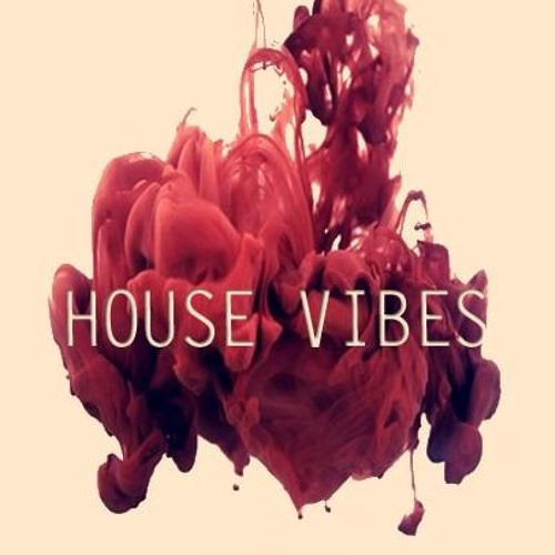 House Vibes's avatar