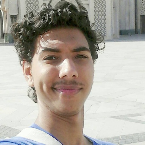 Hamza Nafty H.N's avatar
