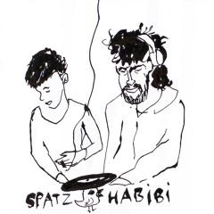 Spatzhabibi