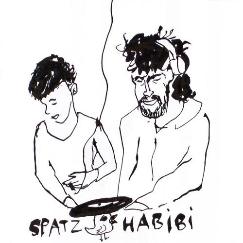 Spatzhabibi's avatar