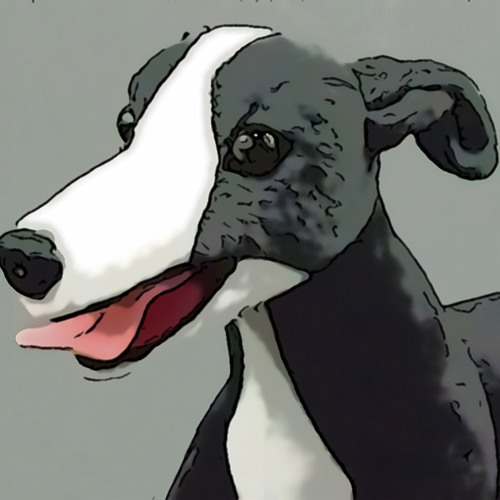 Sean Mattingly's avatar