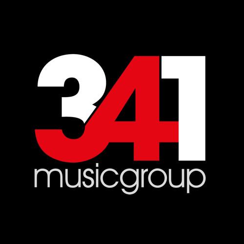 341MusicGroup's avatar