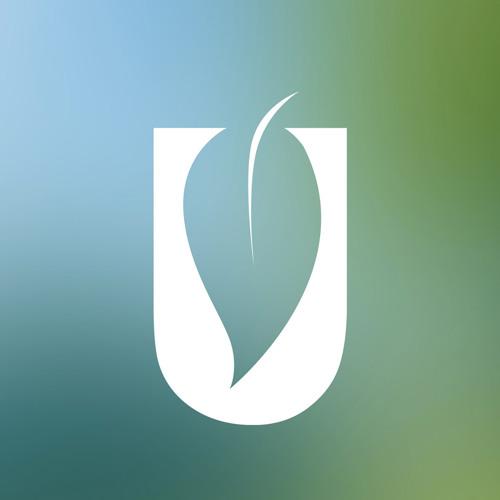 LLUC's avatar