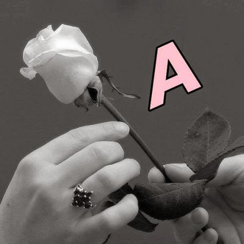 Ahmad to'ma's avatar