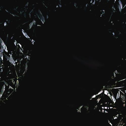 sleepertrain's avatar