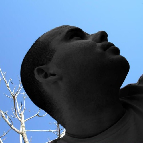 Patrick Fraga Ribeiro's avatar