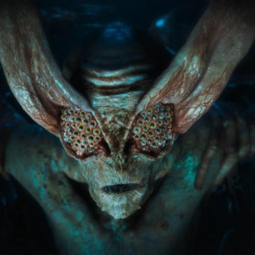 akkupunk's avatar