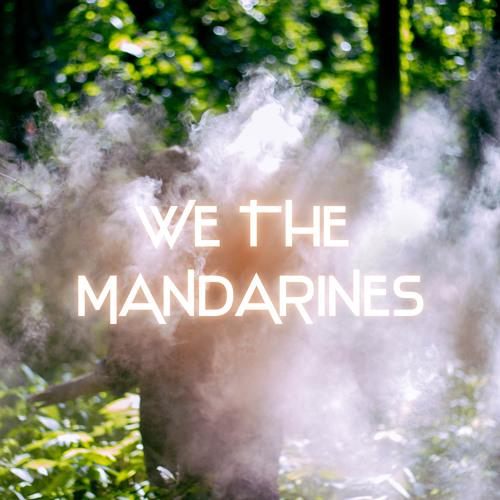 WE THE MANDARINES's avatar
