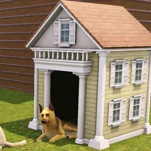 Dog Kennel Bill's avatar