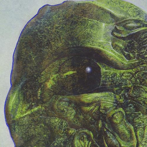 Fran Hartnett's avatar