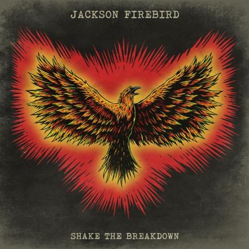 Jackson Firebird's avatar
