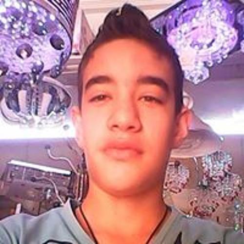 Walid Mansoura's avatar